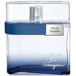 Salvatore Ferragamo F by Ferragamo Free Time Pour Homme 100ml (Туалетная вода)